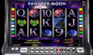 диких казино онлайн в