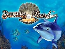 В казино Чемпион Dolphin's Pearl Deluxe