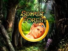 Игровые автоматы Чемпион на деньги Secret Forest