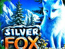 Silver Fox в Казино Чемпион